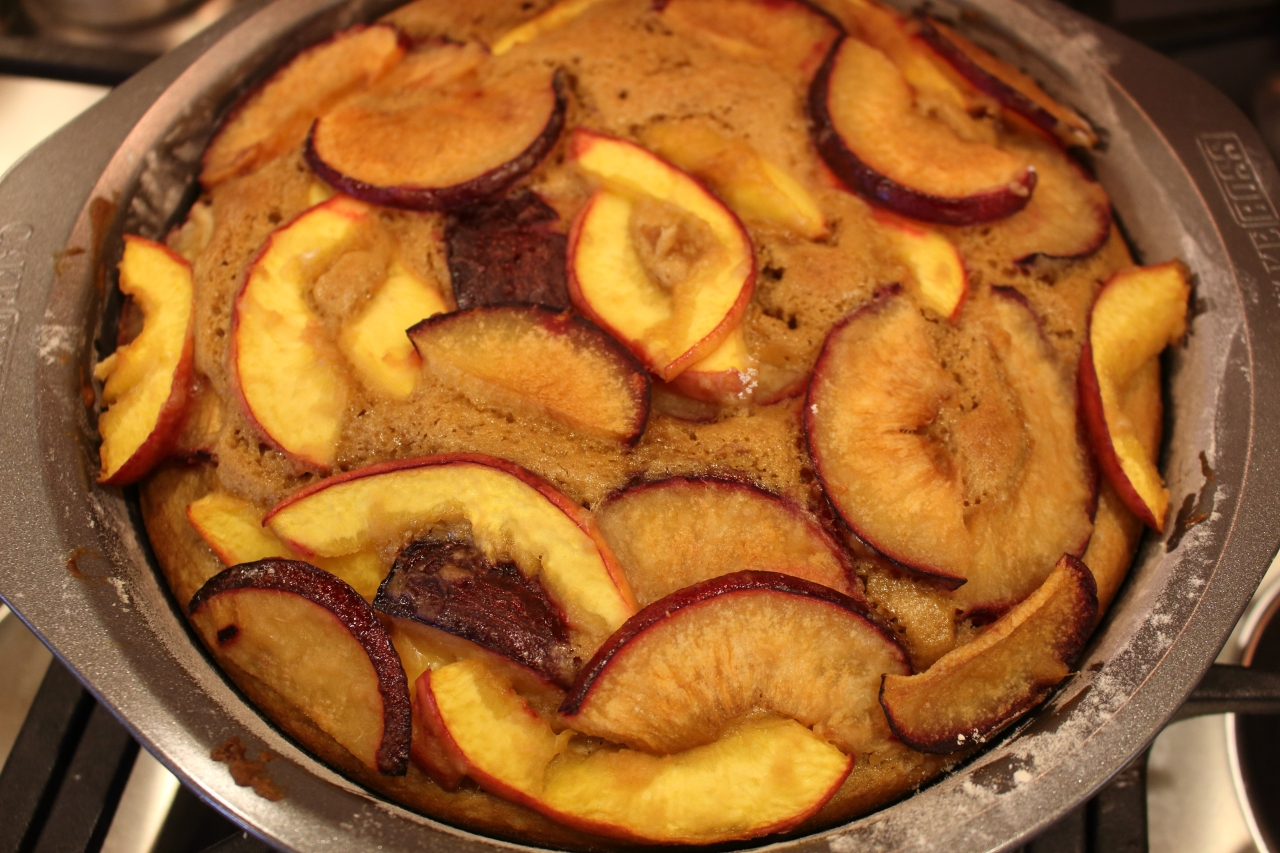 Gingery Nectarine and Plum Cake - baked cake out of the oven