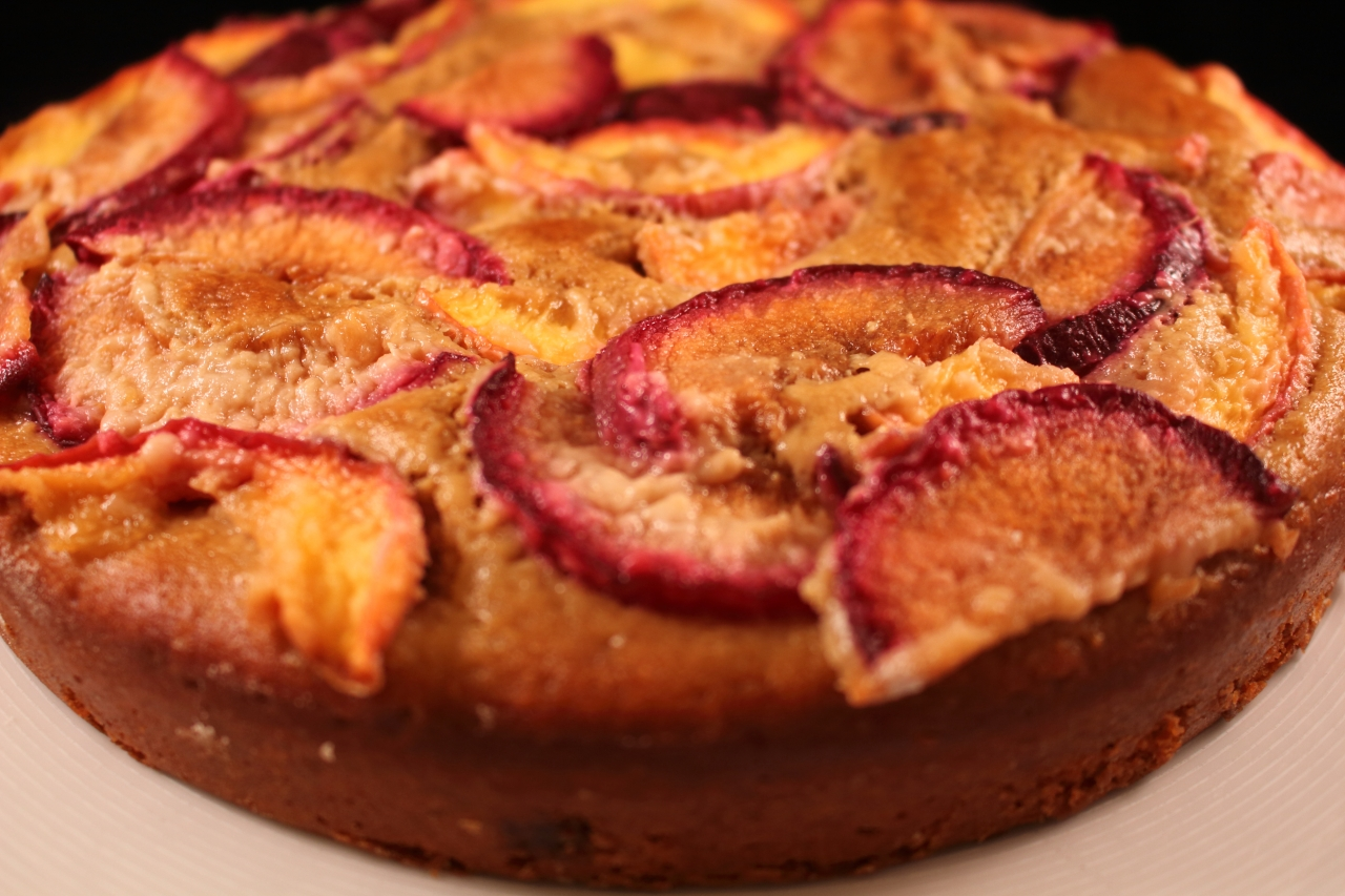 Gingery Nectarine and Plum Cake - closeup of sideview of the cake copy
