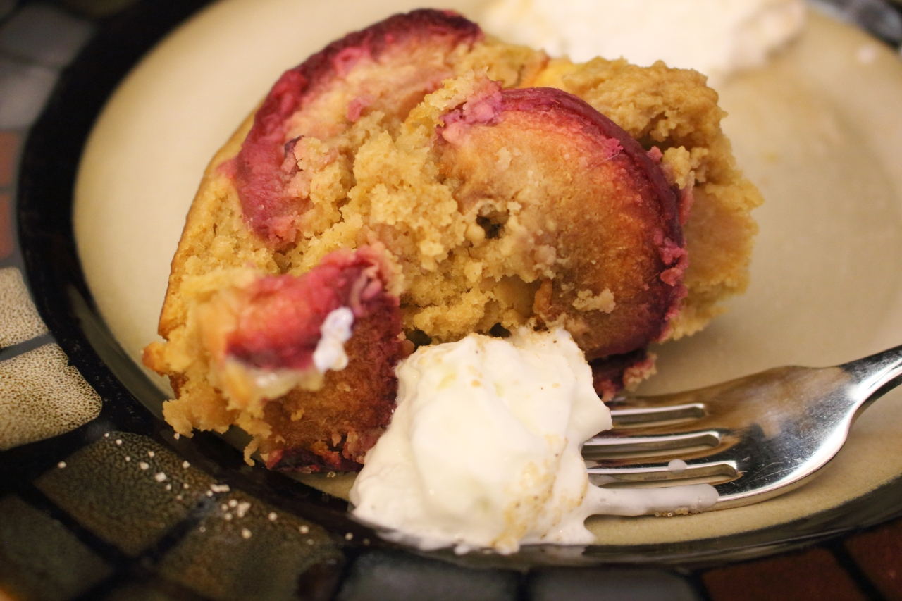 Gingery Nectarine and Plum Cake served on plate with whipped cream