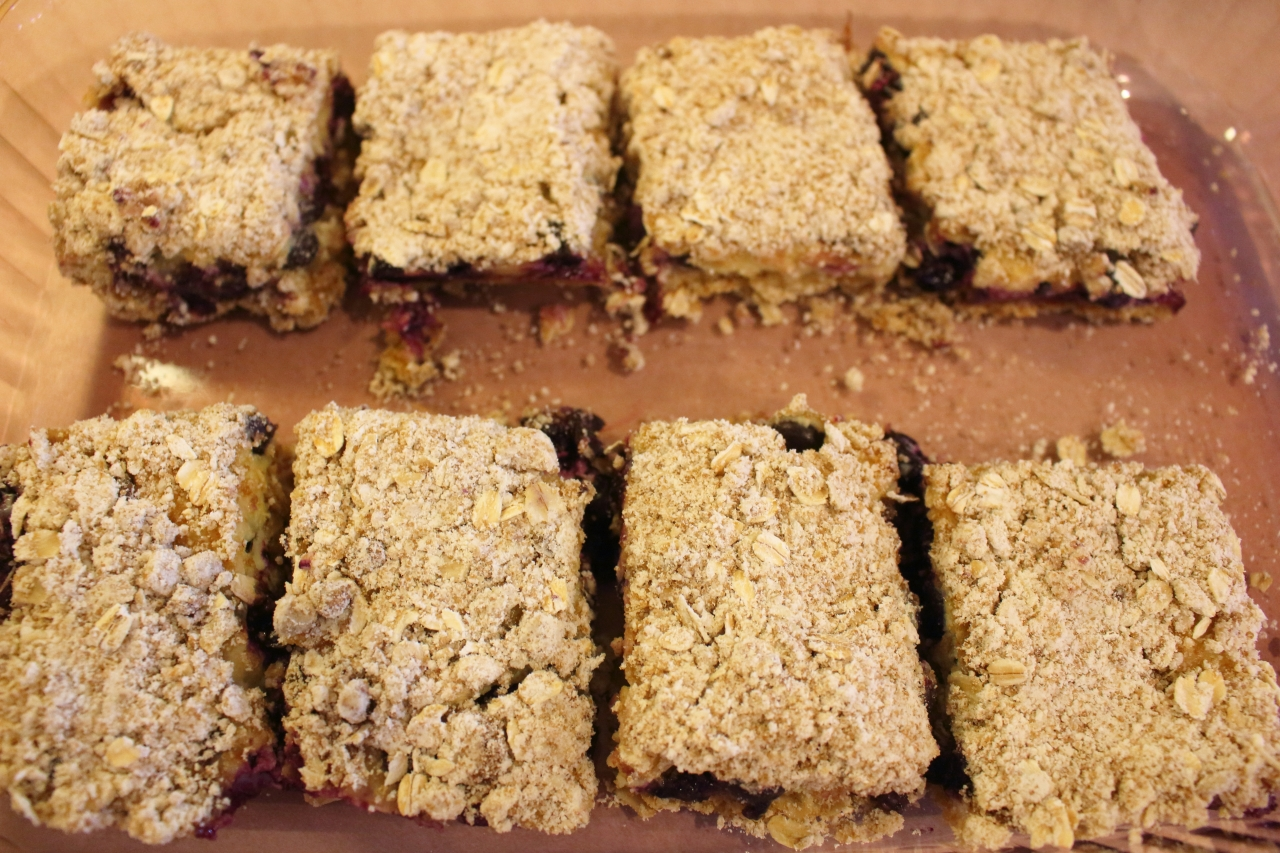 Blueberry Streusel Bars with Lemon Cream Filling - cut into bars for serving